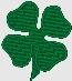 four leaf clover embroidery