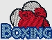 Embroidered boxing